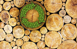 Pipe Boxing - Sustainable Timber